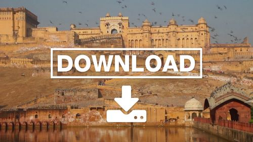 Fort And Doves In Jaipur